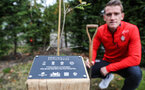 Steven Davis of Southampton plants a tree as part of the 'For Club and Country' campaign, to mark footballers who lost their lives during WWI, at the Staplewood Campus, Southampton, 9th November 2018