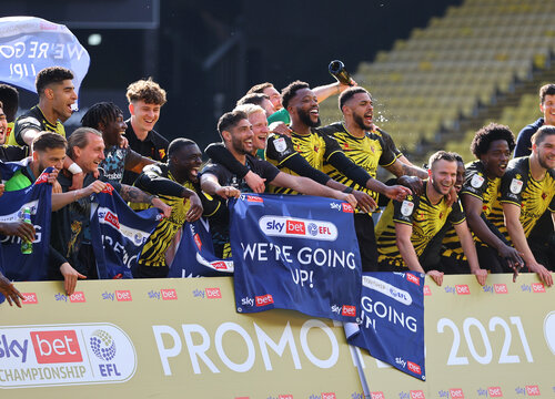 Promoted teams in profile: Watford
