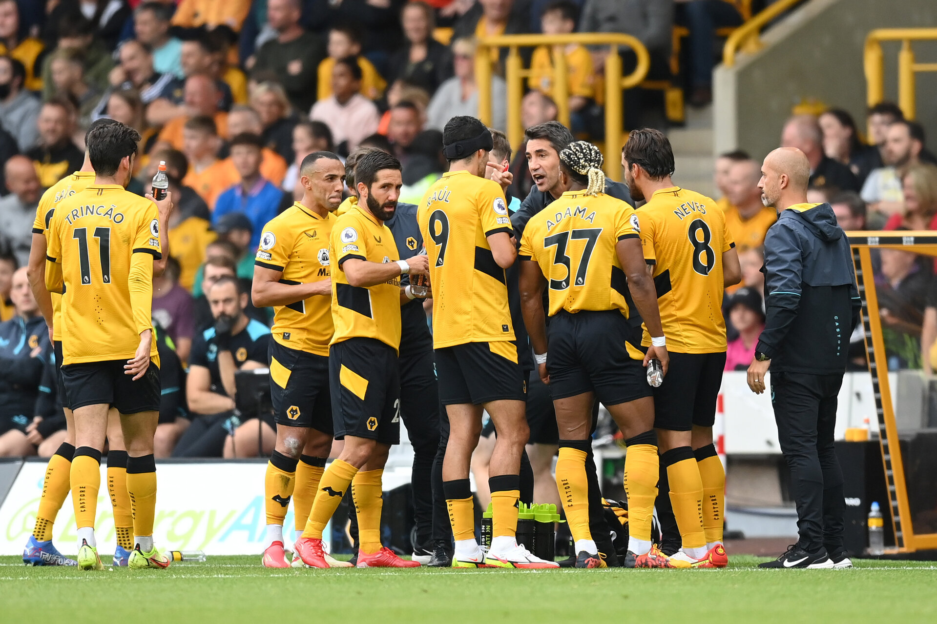 WOLVERHAMPTON, ENGLAND - AUGUST 29: Bruno Lage, Manager of Wolverhampton Wanderers gives instructions to their side  during the Premier League match between Wolverhampton Wanderers  and  Manchester United at Molineux on August 29, 2021 in Wolverhampton, England. (Photo by Michael Regan/Getty Images)